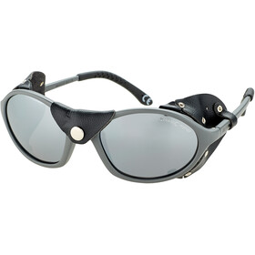 Alpina Sibiria Glasses tin matt-black/black mirror